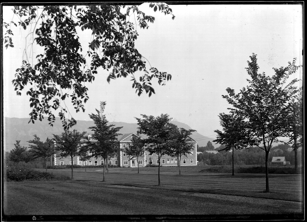 Ford from the Quad, 1916, with newly-planted elm trees.