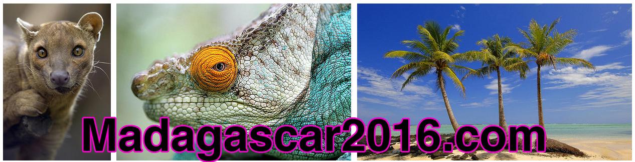 4-Madagascar-url